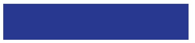 timeks-logo2